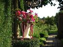 Bloemen plukken in Bosschenhoofd (NL)