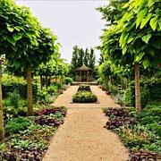 Hidden Gardens, Vogelwaarde